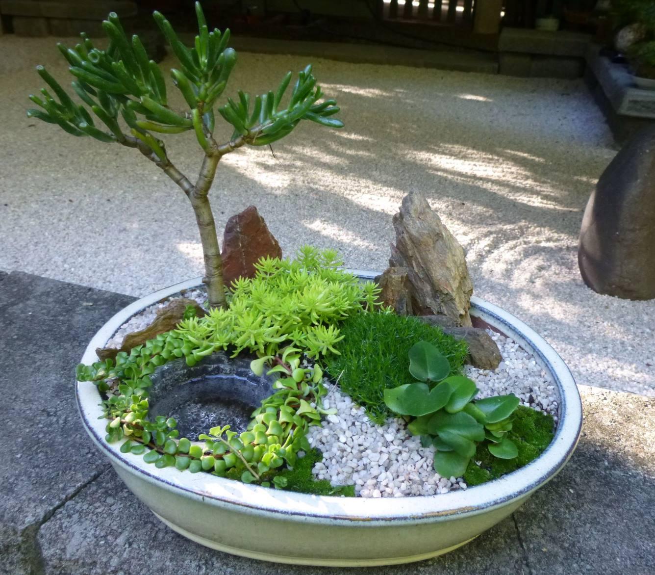 Brisbane florist flowers kent florist brisbane for Mini japanese garden